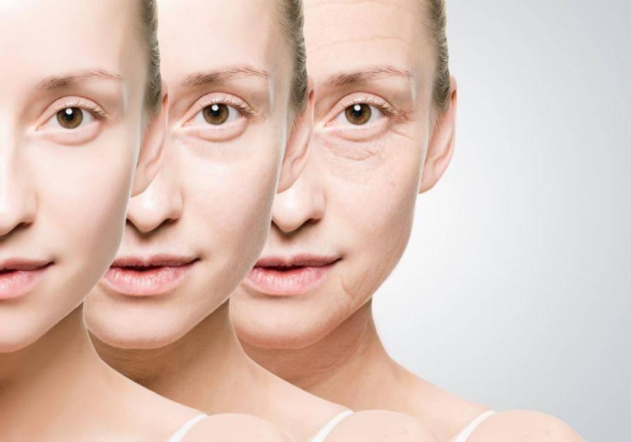 抗氧化和延缓衰老是一种概念嘛?